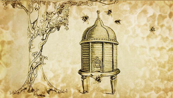 5 Victorian BeekeepingFacts