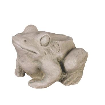15586 Toad COB
