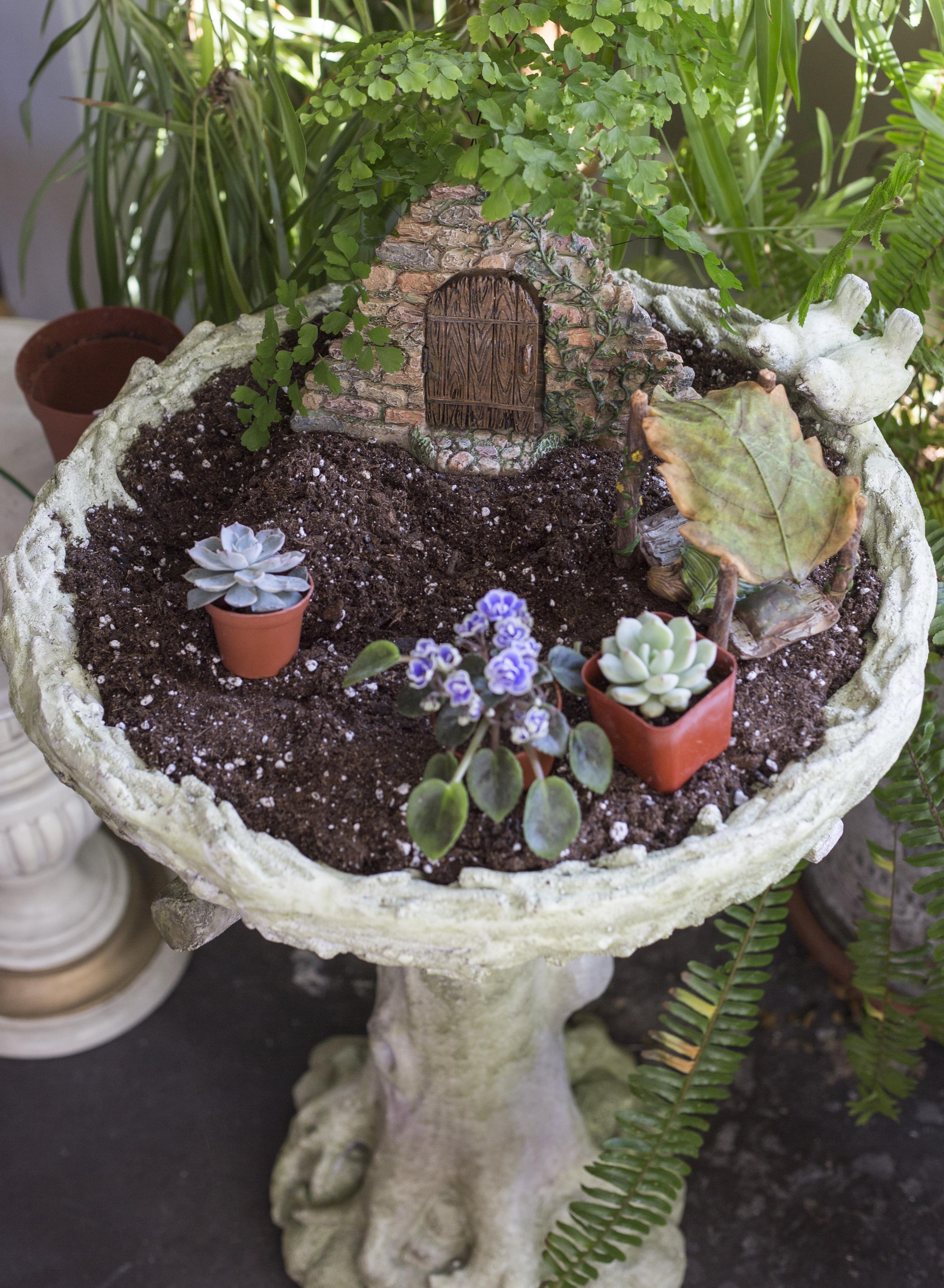 Enchanted Garden: Enchanted Fairy Gardens: The Birdbath Garden