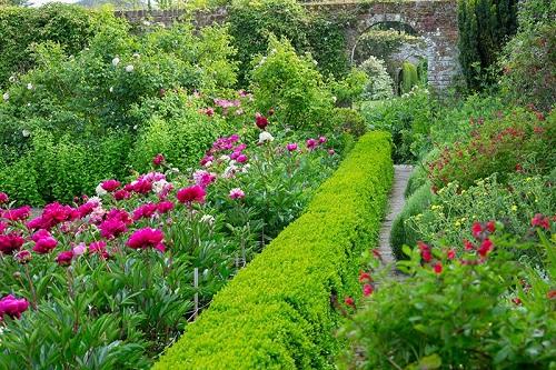 goodnestone-gardens